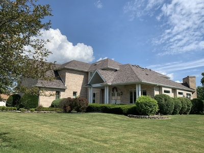 Bourbonnais Single Family Home For Sale: 1023 Country Lane