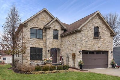 Wheaton  Single Family Home For Sale: 1010 Sunset Road