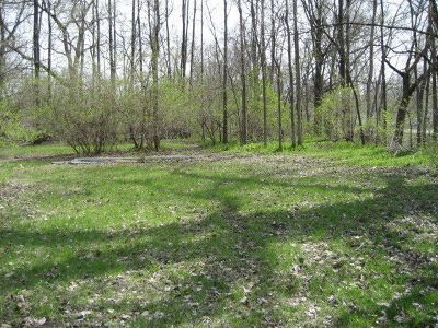 Braidwood Residential Lots & Land For Sale: 247 West Cermak Road