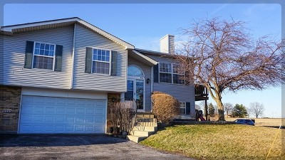 Frankfort Condo/Townhouse For Sale: 7618 West St Francis Road #B