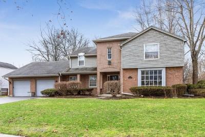 Flossmoor Single Family Home For Sale: 2504 Brookwood Drive