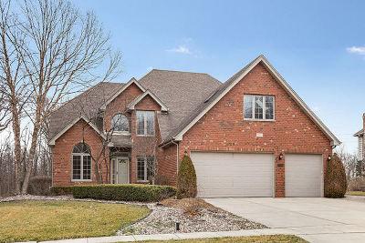Homer Glen Single Family Home For Sale: 13028 West Creekside Drive