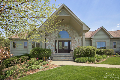 McHenry Single Family Home For Sale: 1208 Majestic Drive