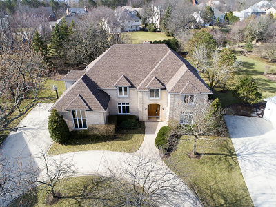 Burr Ridge Single Family Home For Sale: 6 Todor Court