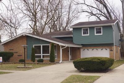 Villa Park Single Family Home For Sale: 127 West Washington Street