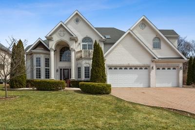 Lisle Single Family Home For Sale: 4995 Keller Street