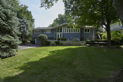 Hinsdale Single Family Home For Sale: 447 North Quincy Street