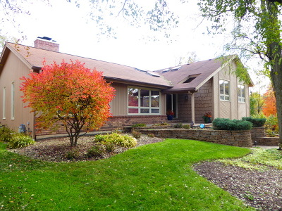 Downers Grove Single Family Home For Sale: 5421 Maplewood Place