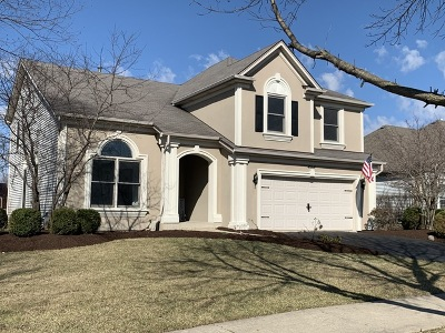 Naperville Single Family Home For Sale: 4864 Snapjack Circle
