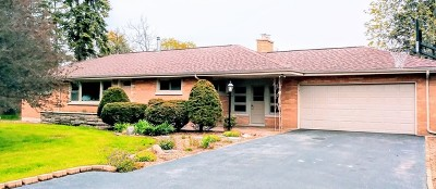 Downers Grove Single Family Home For Sale: 6800 Fairview Avenue