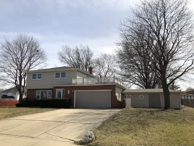 Schaumburg Single Family Home For Sale: 15 West Niagara Avenue