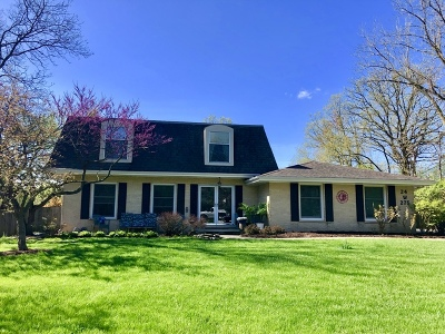 Burr Oaks Single Family Home For Sale: 24w275 Pin Oak Lane