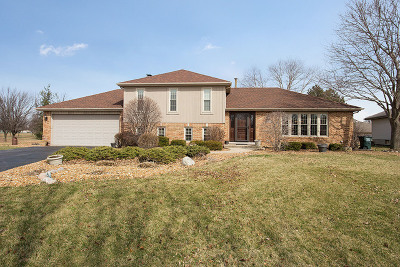 Mokena Single Family Home For Sale: 10030 Derby Lane