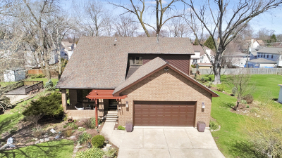 Downers Grove Single Family Home Price Change: 1024 Norfolk Street