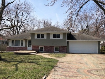 West Chicago  Single Family Home For Sale: N130 Prince Crossing Road