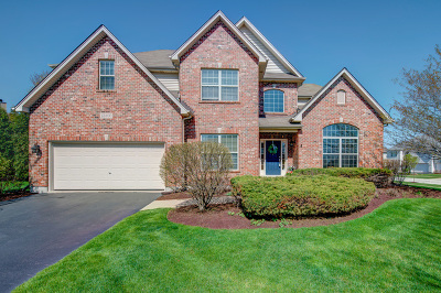 Plainfield Single Family Home For Sale: 13400 Lindengate Court