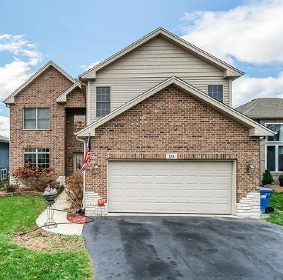 Bensenville Single Family Home For Sale: 155 South Ellis Street