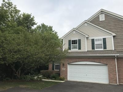 Batavia  Condo/Townhouse For Sale: 217 Trentt Drive