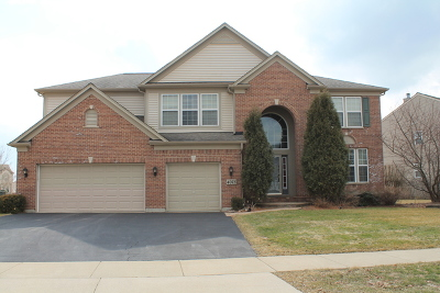 Carpentersville Single Family Home For Sale: 4073 Stratford Lane