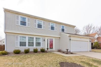 Buffalo Grove Single Family Home Re-Activated: 871 Kingsbridge Way