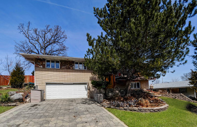 Hickory Hills Single Family Home For Sale: 8658 Orchard Drive