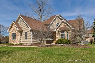 Batavia  Single Family Home For Sale: 703 Ridgelawn Trail