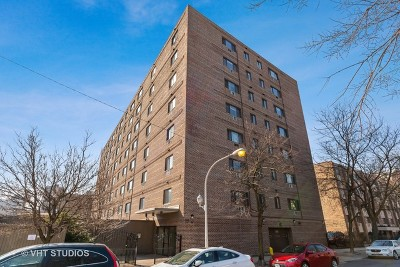 Condo/Townhouse For Sale: 607 West Wrightwood Avenue #807