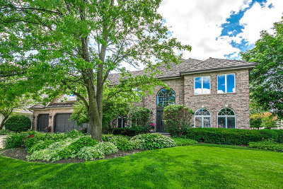 Naperville Single Family Home New: 3111 White Eagle Drive