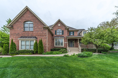Naperville Single Family Home For Sale: 4607 Sunningdale Drive
