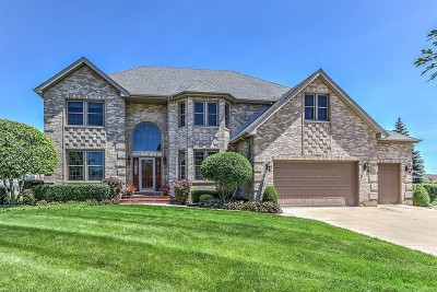 Schaumburg Single Family Home For Sale: 809 Seers Drive