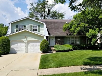 Downers Grove Single Family Home For Sale: 1090 Black Oak Drive