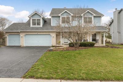 Oswego Single Family Home For Sale: 241 Ashley Court
