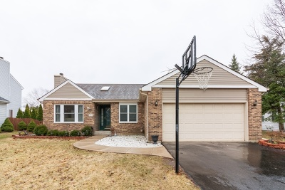 Carol Stream Single Family Home For Sale: 642 Thunderbird Trail