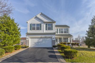 Romeoville Single Family Home For Sale: 410 Gainsborough Drive