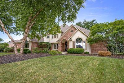 St. Charles Single Family Home For Sale: 38w160 Henricksen Road