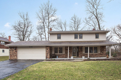 Shorewood Single Family Home For Sale: 24461 West Lancelot Lane
