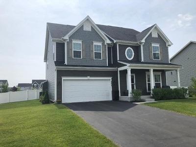 Gilberts Single Family Home For Sale: 943 Sunburst Lane