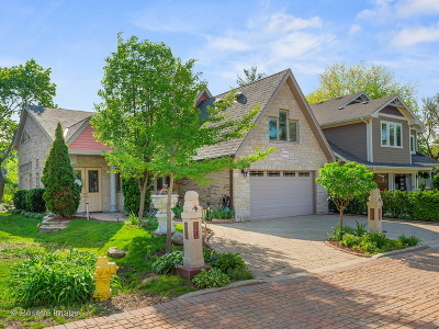 Downers Grove Single Family Home For Sale: 5234 Farrar Court