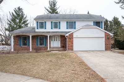 Naperville Single Family Home For Sale: 1258 Jasmine Court