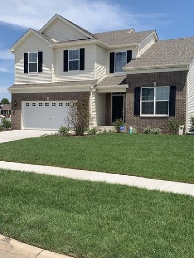Minooka Single Family Home For Sale: 706 Long Ridge Trail