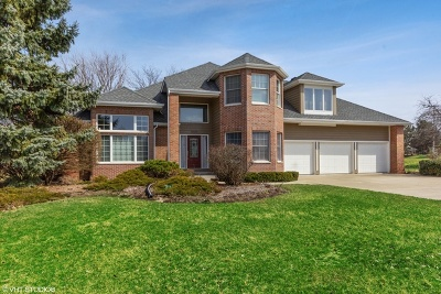 Plainfield Single Family Home For Sale: 17454 South McKenna Drive