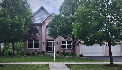 Plainfield Single Family Home For Sale: 22841 Weinhold Drive
