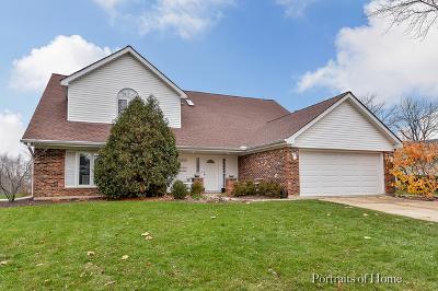 Glen Ellyn Single Family Home For Sale: 23w160 Woodcroft Drive