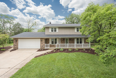 Downers Grove Single Family Home For Sale: 1407 Drove Ave