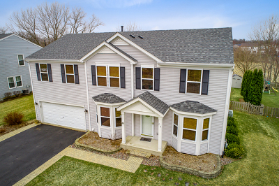 Hampshire Single Family Home For Sale: 214 Johnson Street