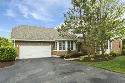 Lemont Condo/Townhouse For Sale: 13916 Steepleview Lane