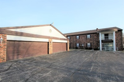 Kankakee Condo/Townhouse For Sale: 1050 South Nelson Avenue #5