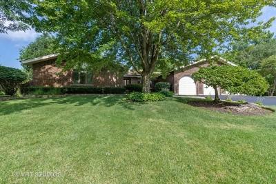Hawthorn Woods Single Family Home For Sale: 4 Elm Street