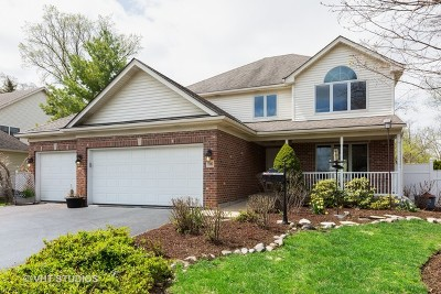 Downers Grove Single Family Home For Sale: 5560 Main Street