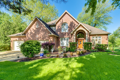 Naperville Single Family Home For Sale: 1139 Tuthill Road